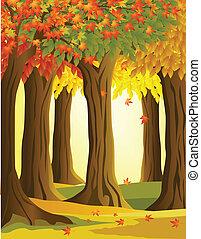 Trasfondo del bosque de otoño