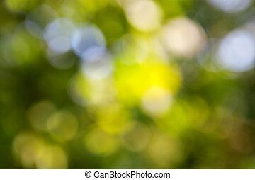 Trasfondo verde abstracto con bokeh natural