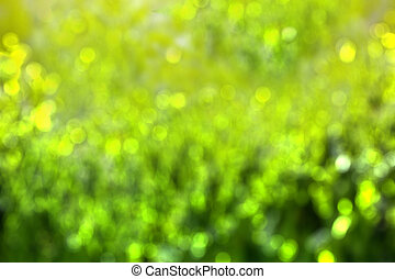 Trasfondo verde abstracto con Bokeh