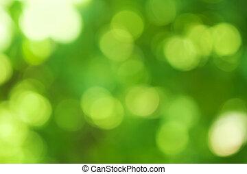 Trasfondo verde borroso, efecto bokeh