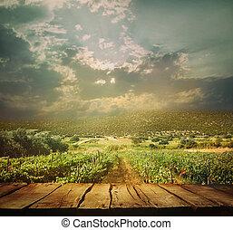 Trasfondo Vineyard