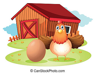 traspatio, gallina, huevo