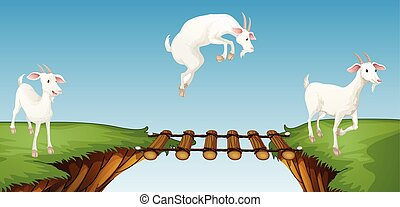 Tres cabras cruzando el puente