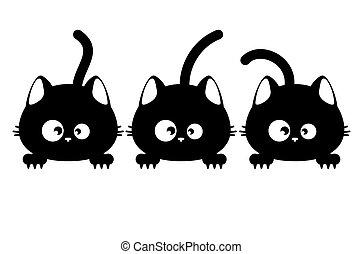 tres, gato, negro, caras