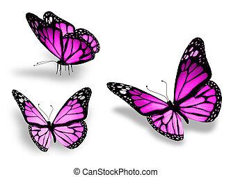 Tres mariposas violetas, aisladas de fondo blanco