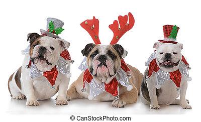 Tres perros de Navidad