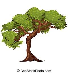 tronco, ilustración, vector, árbol, follaje, verde, exuberante
