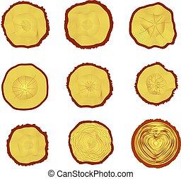 tronco, vector, árbol, sección, conjunto, 9, anillos, ilustración, cruz
