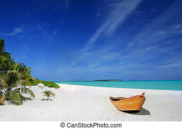 tropical, barco, playa