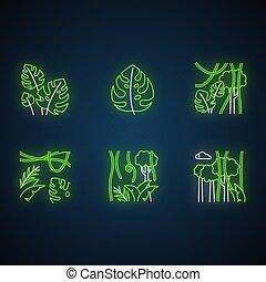 tropical, encendido, neón, jungle., viaje, nature., ilustraciones, bali, suizo, plant., árbol hoja perenne, signs., bosque, rainforest, queso, plantas, vines., vector, explorar, aislado, set., luz, indonesio, iconos, flora.
