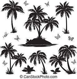 tropical, mariposas, siluetas, palmas, isla