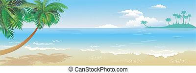 tropical, panorámico, playa, palma