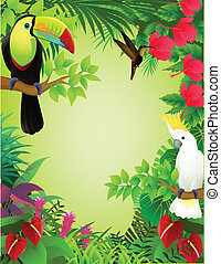 tropical, selva, pájaro