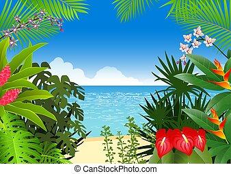 tropical, selva, plano de fondo