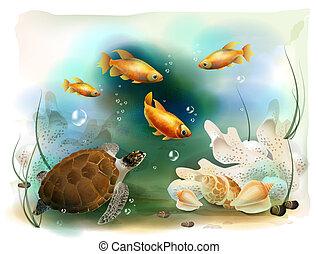 tropical, submarino, ilustración, mundo
