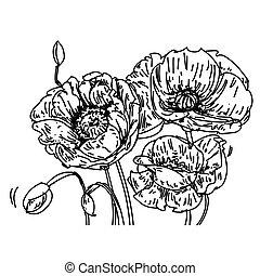 tulipani, fiori, estafar, foglia, trè