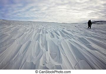 Tundra cubierta de nieve.