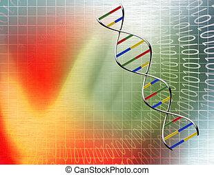 Tunel binario y cadena de ADN