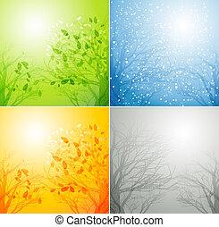 Un árbol en cuatro estaciones diferentes