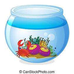Un acuario con criaturas marinas