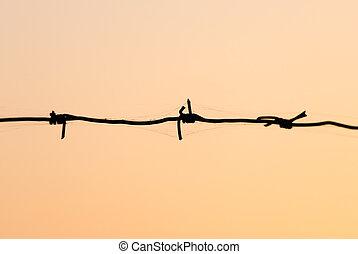 Un alambre de púas al atardecer