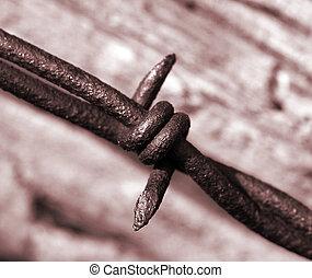 Un alambre de púas