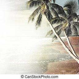 Un antiguo fondo de playa tropical