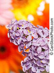 Un arbusto de lilas frente a las flores
