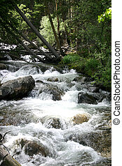 Un arroyo balbuceo