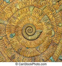 Un asombroso patrón de fibonacci en una cáscara de nautilus