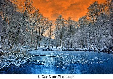Un atardecer naranja espectacular sobre el bosque invernal