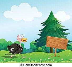 Un avestruz cerca de una tabla vacía
