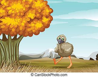 Un avestruz cerca del gran árbol
