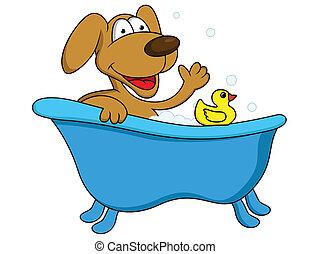Un baño de perros