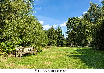 Un banco en un hermoso y exuberante jardín verde