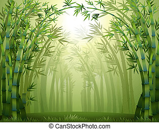 Un bosque de bambú verde