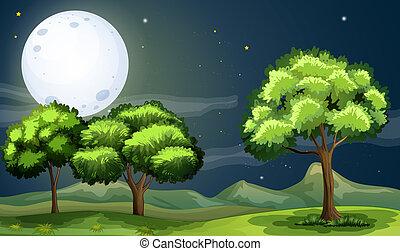 Un bosque limpio y verde bajo la luminosa luna llena