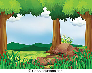 Un bosque verde con rocas
