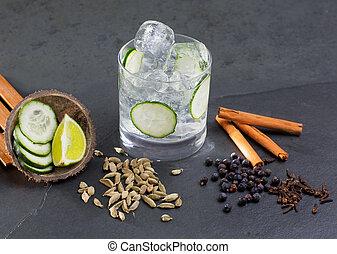 Un cóctel de gin tonic con lima pepino de vainilla y cardamomo