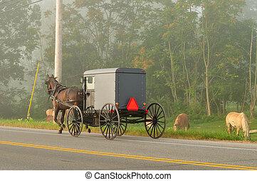 Un caballo Amish y un carruaje en la carretera