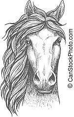 Un caballo de raza árabe con oídos alerta