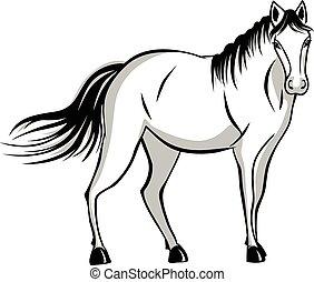 Un caballo en silencio