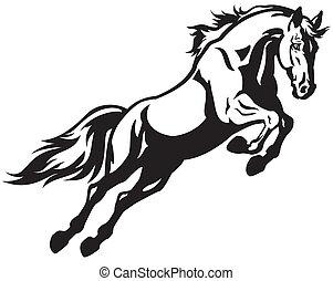 Un caballo saltarín