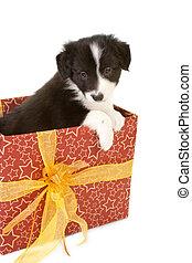 Un cachorro de regalo de Navidad