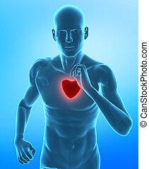 Un concepto de corazón saludable
