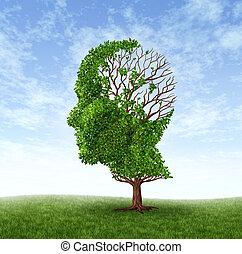 Un concepto de demencia