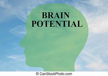 Un concepto potencial de cerebro