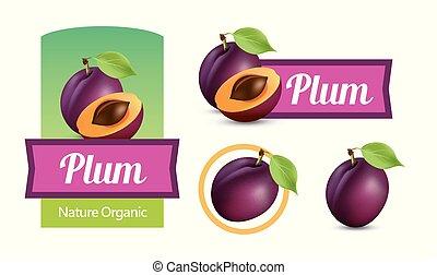 Un conjunto de etiquetas y etiquetas con ciruelas aisladas en blanco ilustraciones de Vectores para Vino y Jam paquete de diseño.