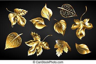 Un conjunto de hojas doradas