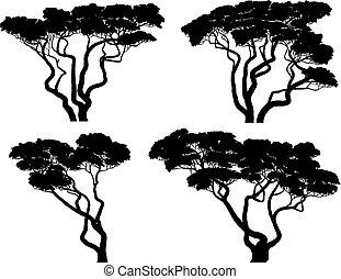 Un conjunto de siluetas de acacias africanas.
